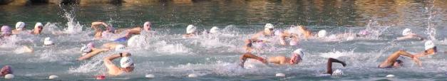 cropped-2009-biathlon-sea-swim.jpg